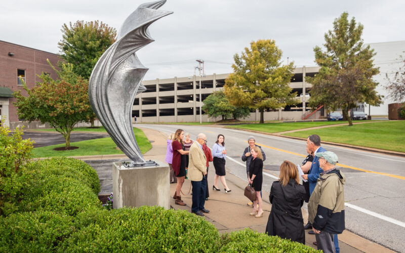 Billowing sculpture reveal 1